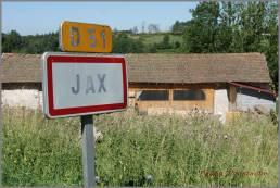 Logistic regression with JAX
